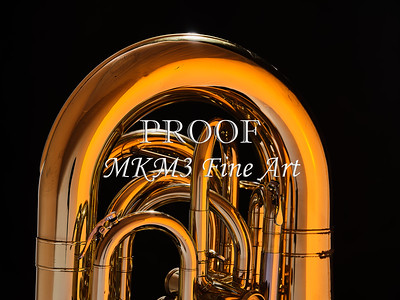 Tuba Mujsic Insdtrument In Color 131.2060