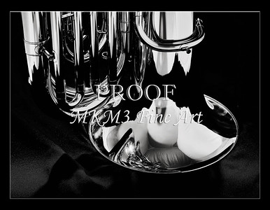 Tuba Art Photograph in Black and White 229.2060