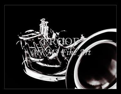 Tuba Art Photograph in Black and White 235.2060