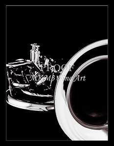 Tuba Art Photograph in Black and White 233.2060
