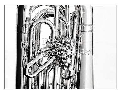Tuba Art Photograph in Black and White 222.2060
