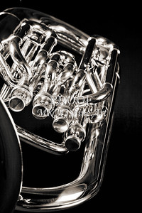 From the Top Tuba Canvas Prints 3284.01