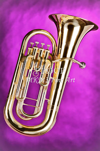 Painting of a Tuba Music Instrument 3279.02