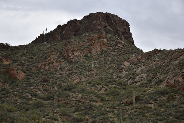 Tucson 2015