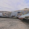 PIMA Aircraft  31418Museum-851 copy