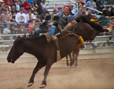 Tucson Rodeo 29 Feb 2011 Bronco Rider