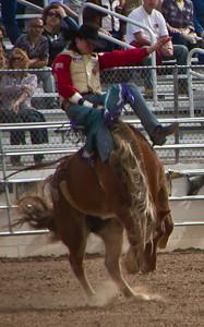 Tucson Rodeo 29 Feb 2011 I got ya