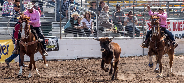 Tucson Rodeo 20 Feb 2016 February 20 2016 024