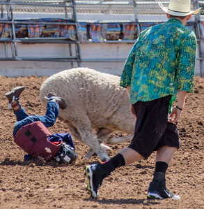 Tucson Rodeo 20 Feb 2016 February 20 2016 003