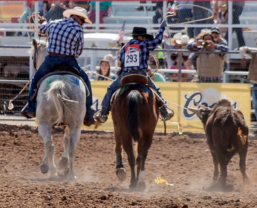 Tucson Rodeo 20 Feb 2016 February 20 2016 017