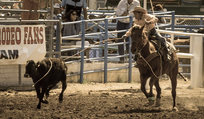 Tucson Rodeo 20 Feb 2016 February 20 2016 012