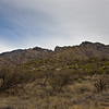 Catalina State Park - Canyon Loop Trail Tucson, AZ