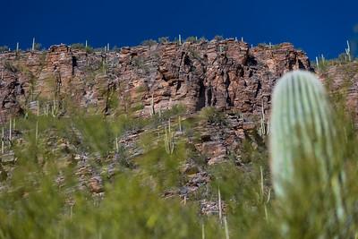CB_Tucson15-36