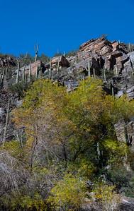 CB_Tucson15-47