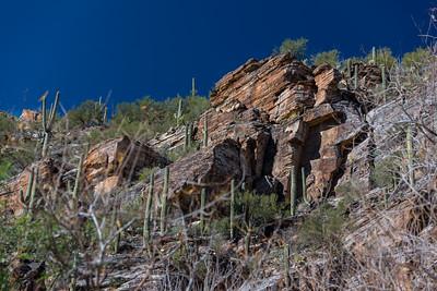 CB_Tucson15-45