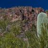 CB_Tucson15-37