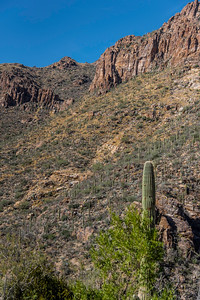 CB_Tucson15-3