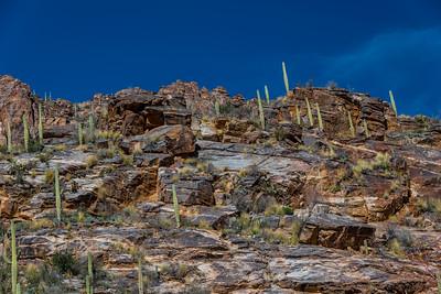 CB_Tucson15-23