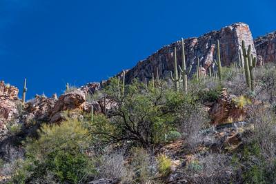 CB_Tucson15-22