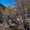 CB_Tucson15-28