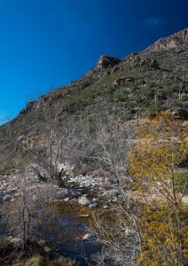 CB_Tucson15-25