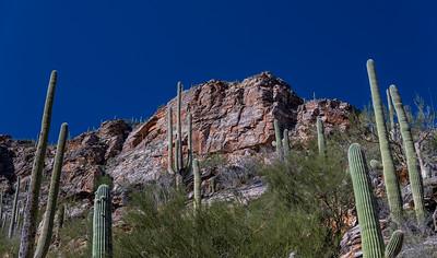 CB_Tucson15-27