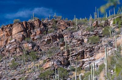 CB_Tucson15-33
