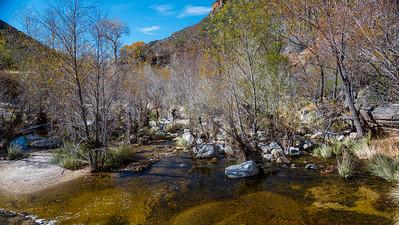 CB_Tucson15-30