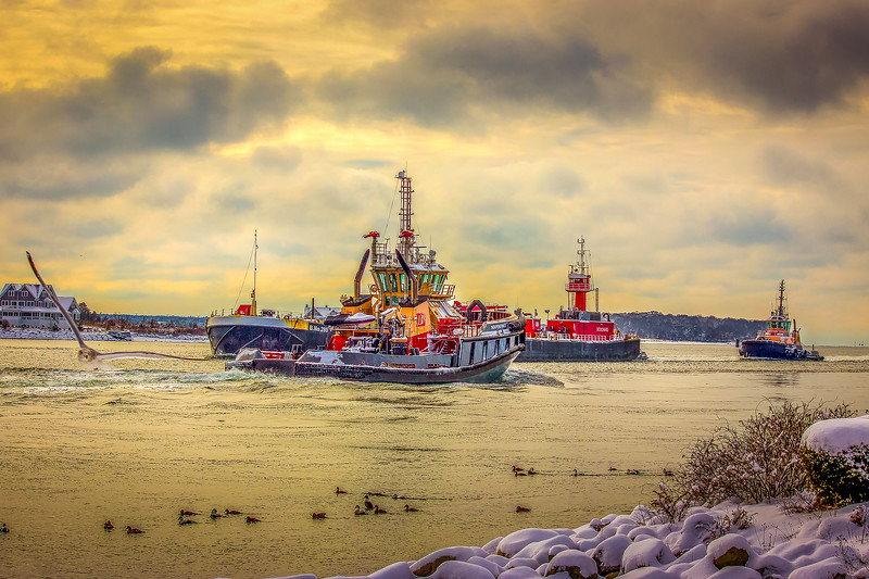 20181129 Tugs for Sale-7 sm