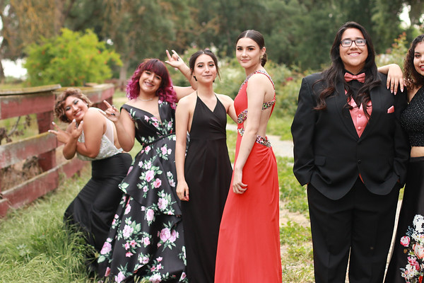Tulare Prom Group 2