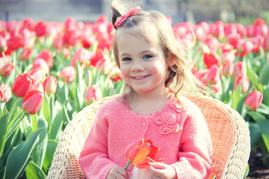 Tulip Minis 2014