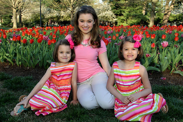 Tulips 2012