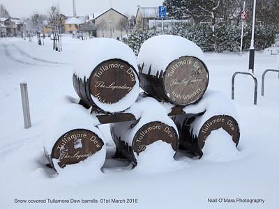 Tullamore Dew barrels