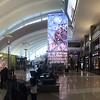 LAX has a beautiful new international terminal.