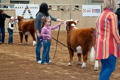 tulsa2020_prejunior_herefords_022