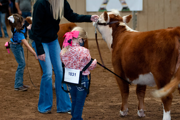 tulsa2020_prejunior_herefords_017