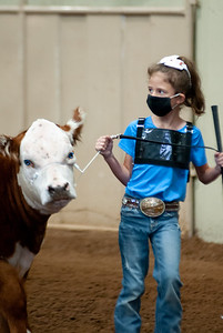tulsa2020_prejunior_herefords_015