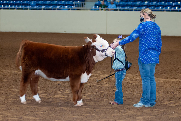 tulsa2020_prejunior_herefords_011