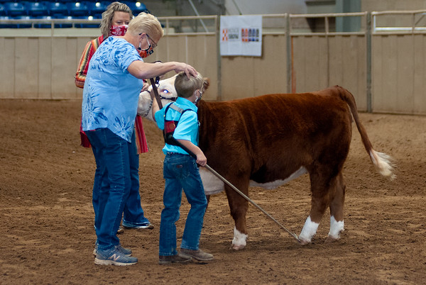 tulsa2020_prejunior_herefords_014