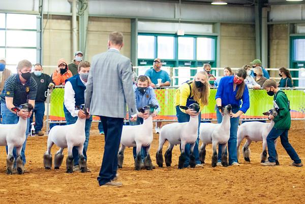 tulsa2020_lambs_market_021