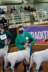 tulsa2020_lambs_market_013