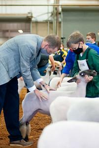 tulsa2020_lambs_market_019