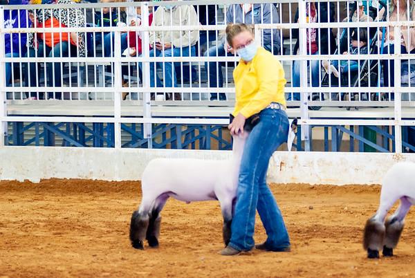 tulsa2020_lambs_market_024