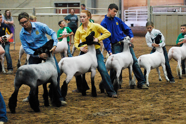 Tulsa Wether Lamb Grand Drive