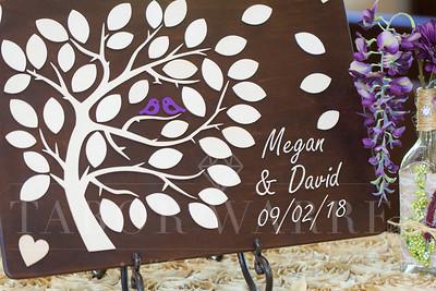 Megan & David-9