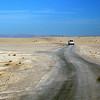 352 Desert oases, Tunisia