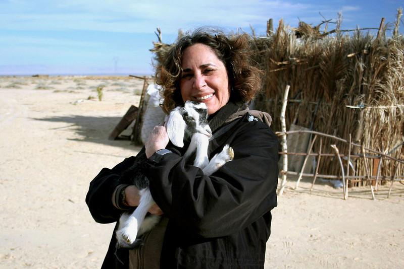 371 Bedouin camp