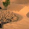 549 Sahara Desert, Tunisia