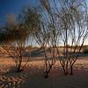 525 Sahara Desert camp, Tunisia