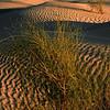 529 Sahara Desert camp, Tunisia